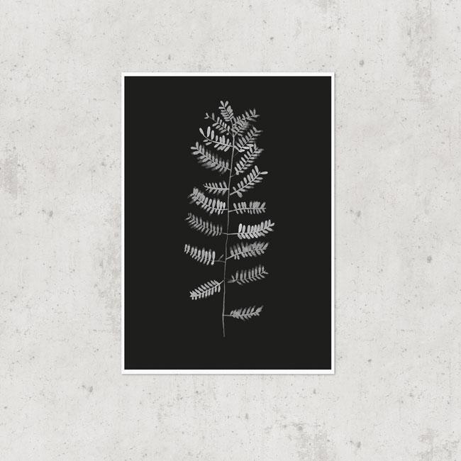 Botanische poster tak zwart wit