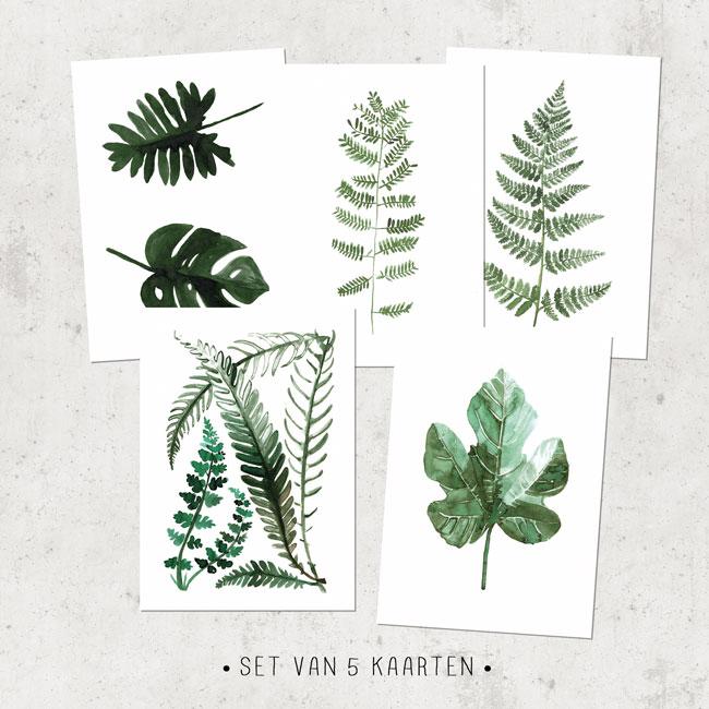 set van vijf botanische kaarten groen