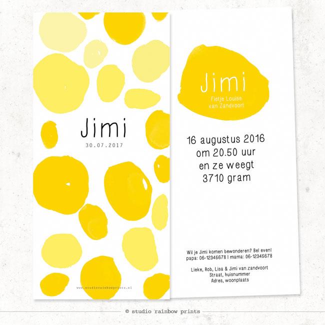 Geboortekaartje JIMI