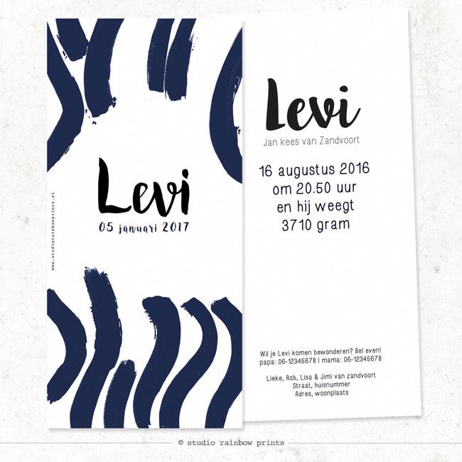Geboortekaartje LEVI