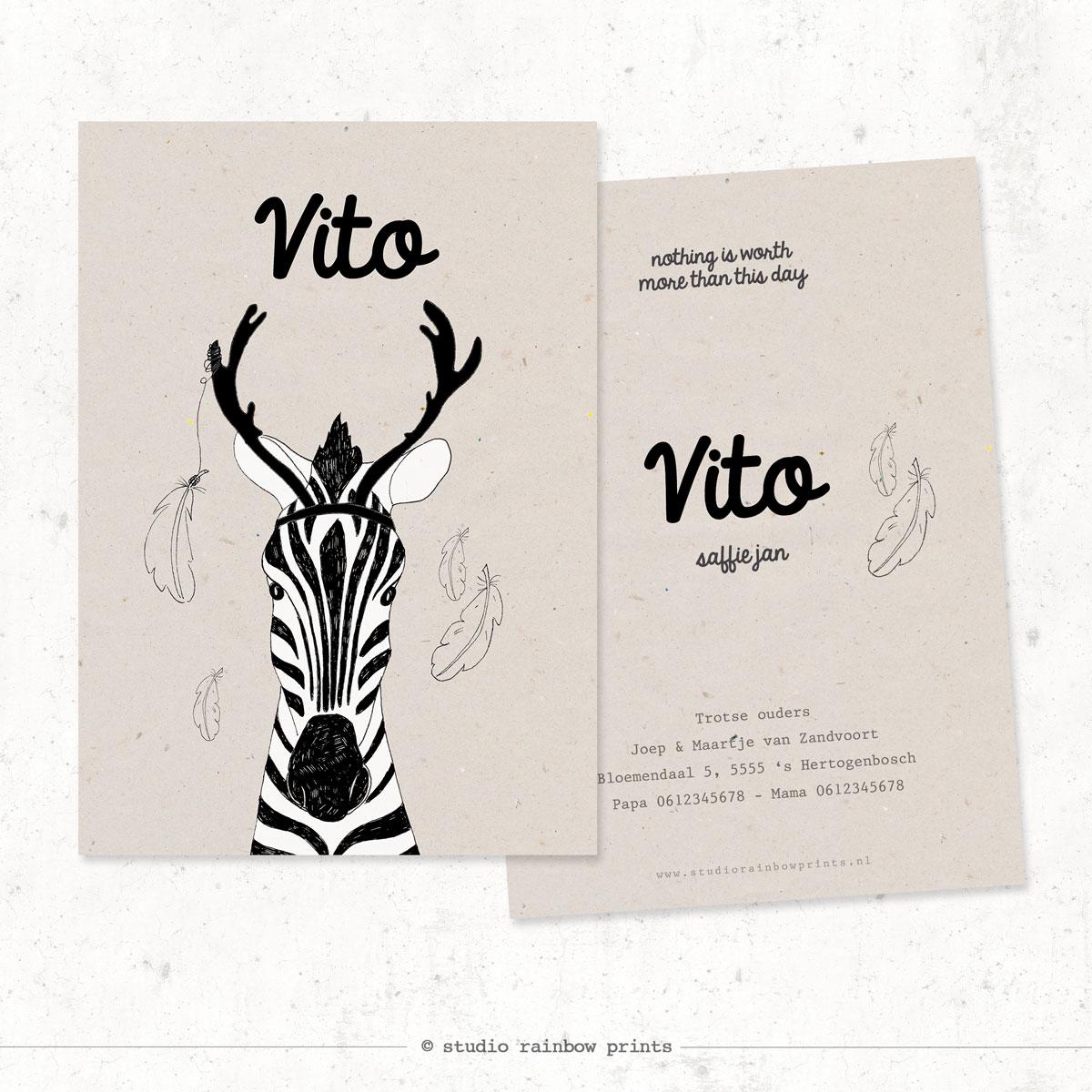 Geboortekaartje Vito